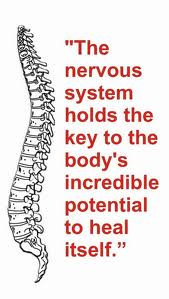 Healthy Nervous System = Health